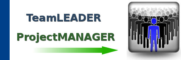 Temporary Team Leader / Project Manager